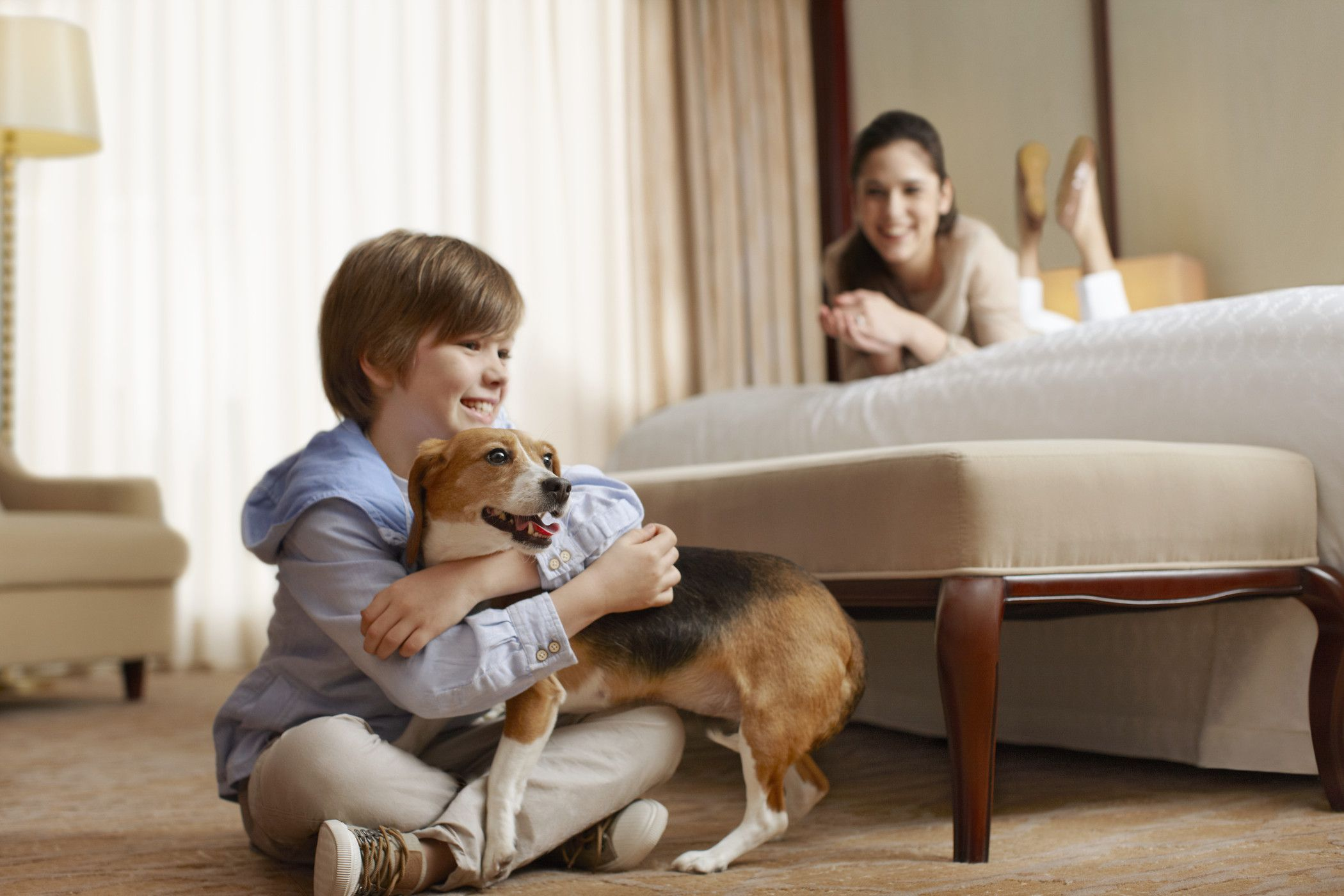 Sheraton Roanoke Hotel & Conference Center - Pet Friendly
